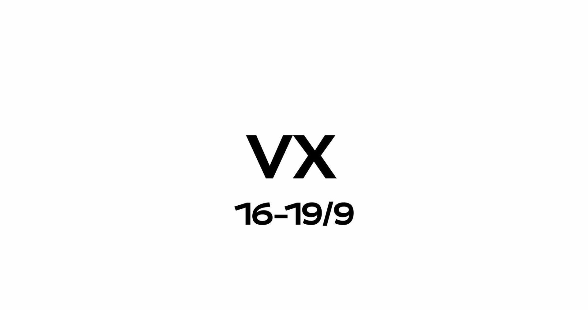 Vladimir Film Festival VX